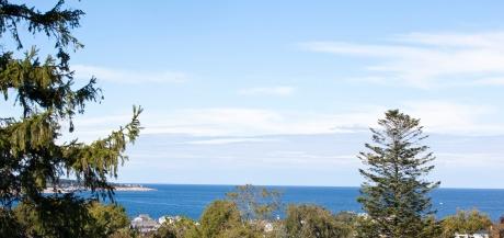 IMG_7769 ocean view